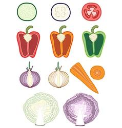 Vegetable cutaways vector