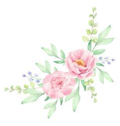 Watercolor pink peony flower bouquet arrangement vector