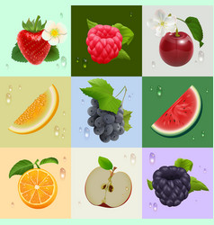 Set of ripe fruits strawberry raspberry cherry vector