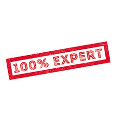 100 percent expert rubber stamp vector image