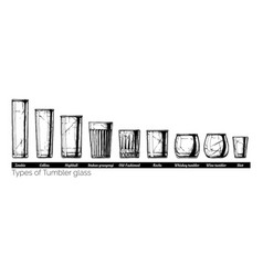 tumbler glass types vector image vector image