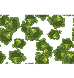 Cabbage seamless pattern on white vector