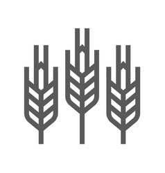 Cereals wheat line icon vector