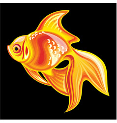 Collection of mascots goldfish vector