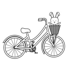 cute little rabbit in bicycle with basket vector image