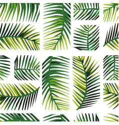 geometric arrangement palm leaves vector image