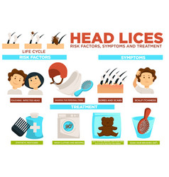 Head lice risk factors symptoms and treatment vector