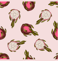 seamless pattern with hand drawn colored pitaya vector image