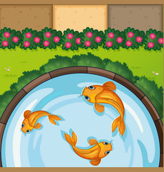 Three fish in pond vector