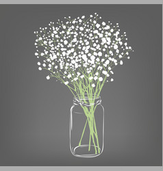 White flowers bouquet gypsophila flowers vector