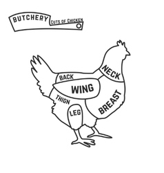 Cuts of chicken butcher diagram vector image vector image
