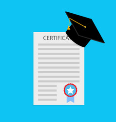 education certificate and diploma vector image