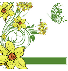 hand drawing narcissus flowers background vector image