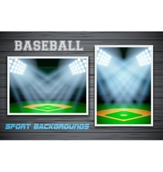 Set Backgrounds of baseball stadium vector image