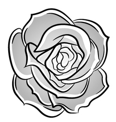 Rose decorative vector image vector image