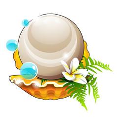 Beautiful arrangement seashells flower and a vector
