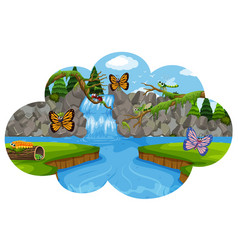 beautiful landscape with insect vector image
