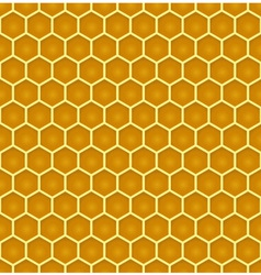 Bee honeycomb colorful seamless pattern eps10 vector