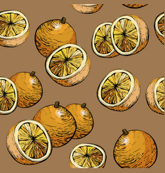 citrus seamless pattern with oranges vector image
