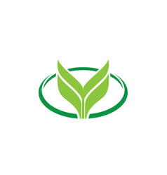 oval leaf eco logo vector image