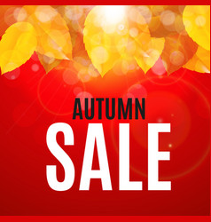 Shiny autumn leaves sale banner business discount vector