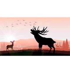 Silhouette a deer and kangaroo the feeding vector image
