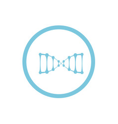 dna blue round icon vector image vector image