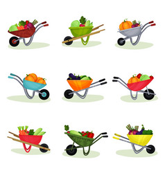 flat set of garden wheelbarrows full of vector image