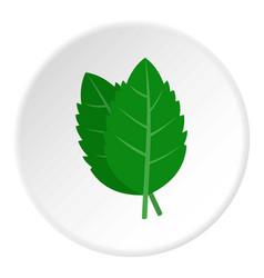 fresh green basil leaves icon circle vector image
