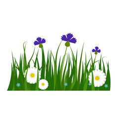 Green grass border plant lawn nature meadow vector