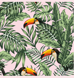 green jungle with toucan pink background vector image