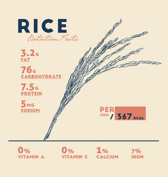 Health benefits rice nutrition facts vector