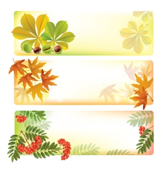 Horizontal autumn banners vector image