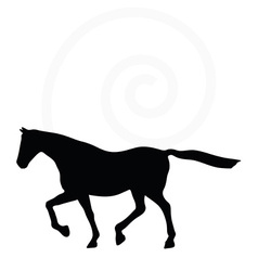 Horse silhouette in loping pose vector