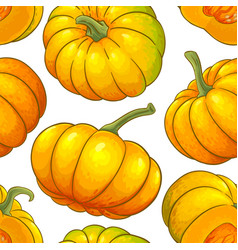 pumpkin fruit pattern on white background vector image