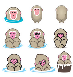 snow monkeys or japanese macaque vol 1 vector image