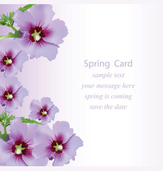 Spring flowers bouquet card background beautiful vector