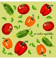 Eco vegetables mix on a green background vector image