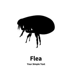 Black fleas vector
