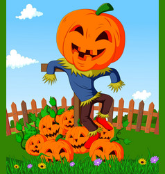 Cartoon scarecrow and pumpkins vector