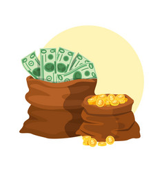 dollars money banknotes and coins bag gold vector image