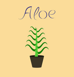 flat stylish background plant aloe vector image