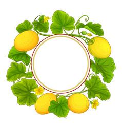 Melon plant frame on white background vector