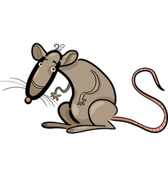 rat cartoon character vector image