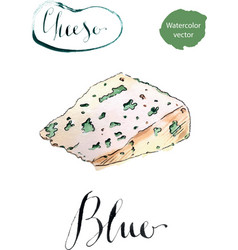 tasty blue cheese vector image