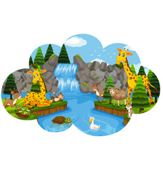 wild animal at the waterfall vector image