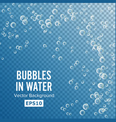 underwater bubbles transparent background 3d vector image vector image