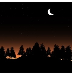 Evening contour black and landscape trees vector image vector image