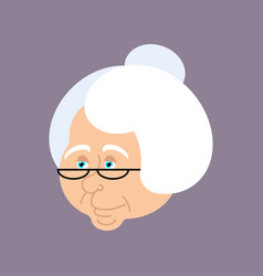 grandmother portrait old woman face crone vector image