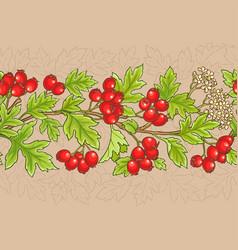 hawthorn pattern vector image
